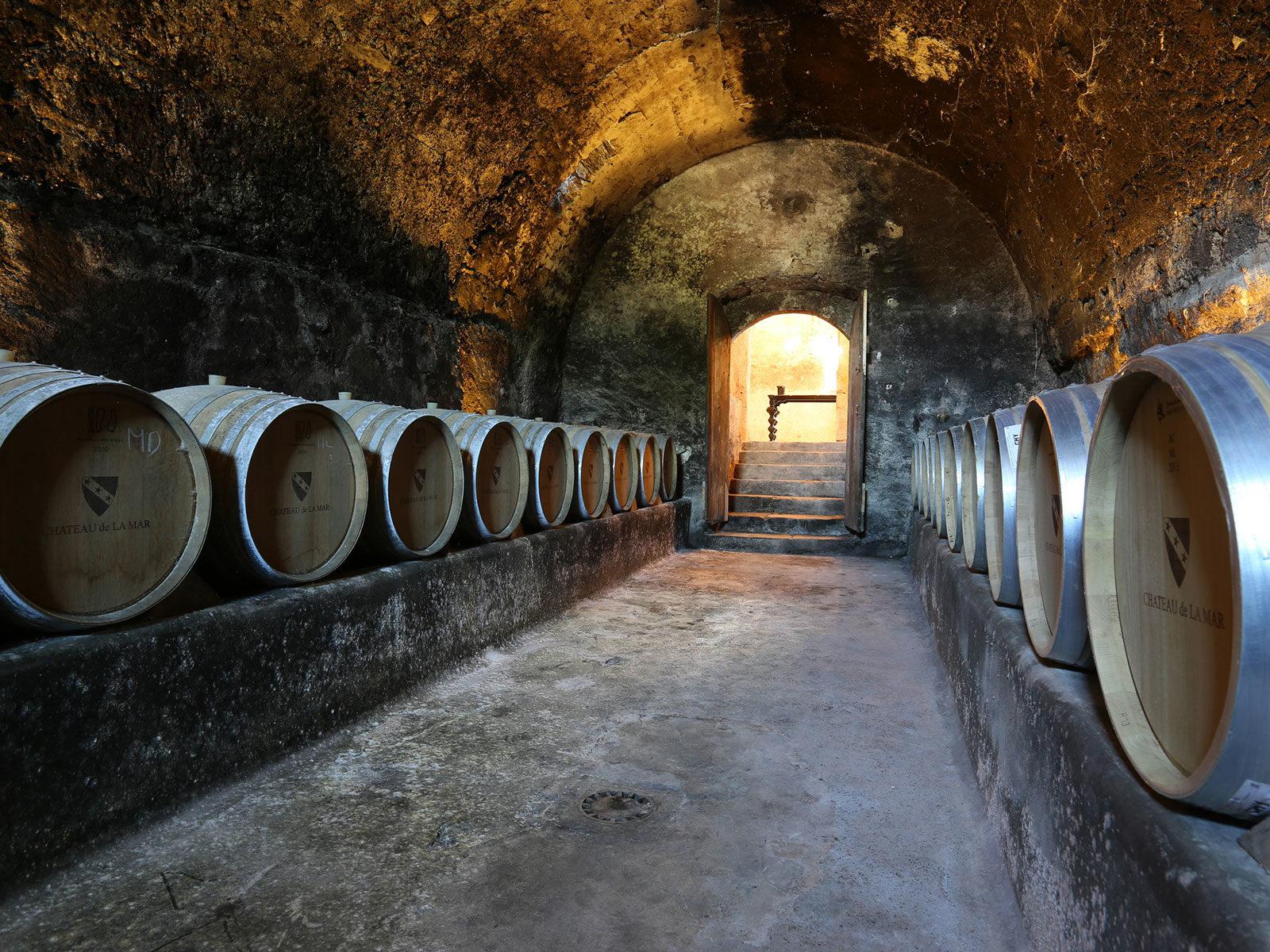 Chai du château de La Mar Vin de Savoie