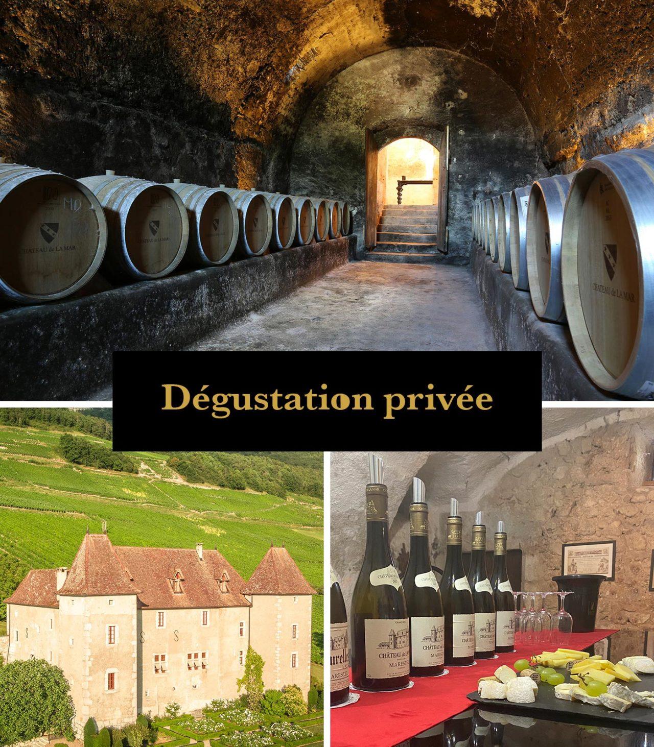 Degustation de vins de savoie clos marestelen groupe